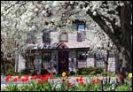 Limestone Inn, Strasburg PA, Amenities